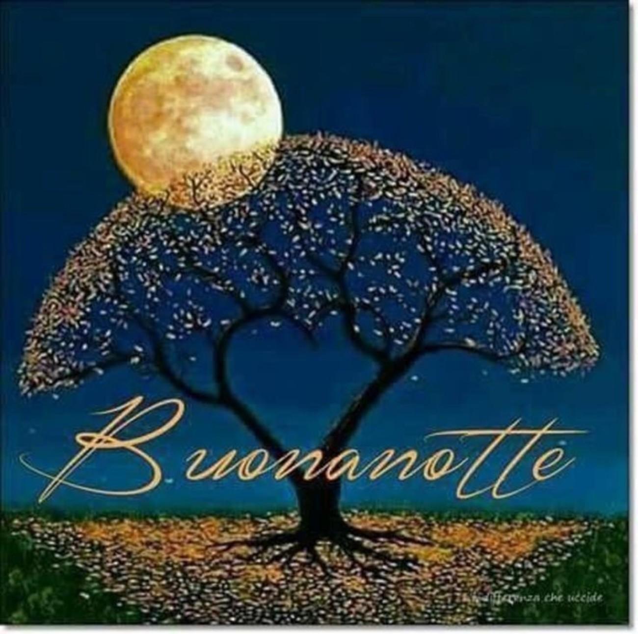 Bellissima Buonanotte Bella Gente 8 Buongiornoate It