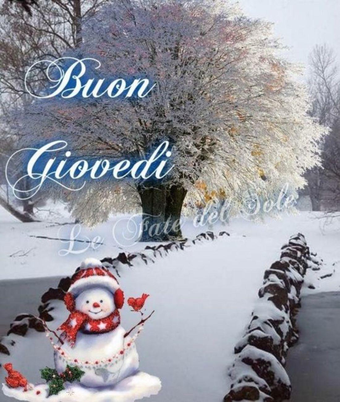 Buon giovedì nevoso (2)