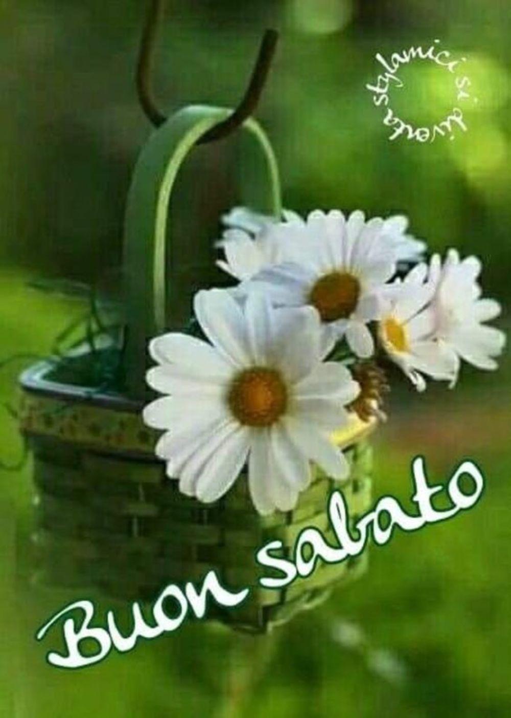 Buon sabato immagini per whatsapp (2)