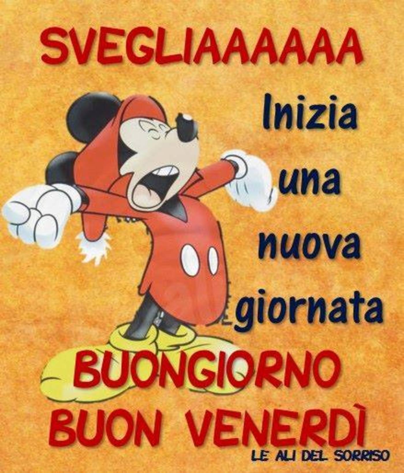 Buon Venerdì Divertenti Archives Pagina 3 Di 5