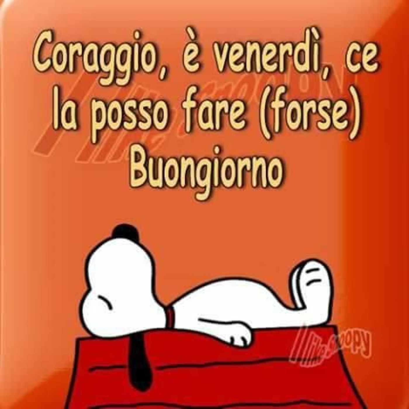 Buon Venerdì Divertente Con Snoopy 2 Buongiornoate It