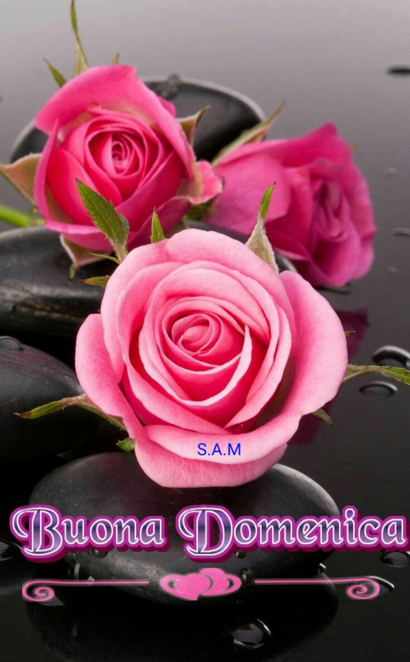 Buona domenica con fiori (2) - BuongiornoATe.it