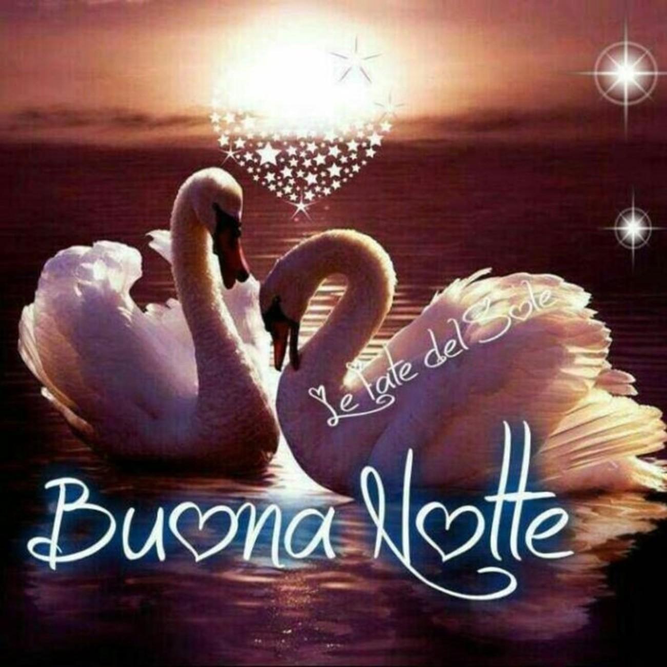 Buonanotte Amore Mio 3 Buongiornoate It