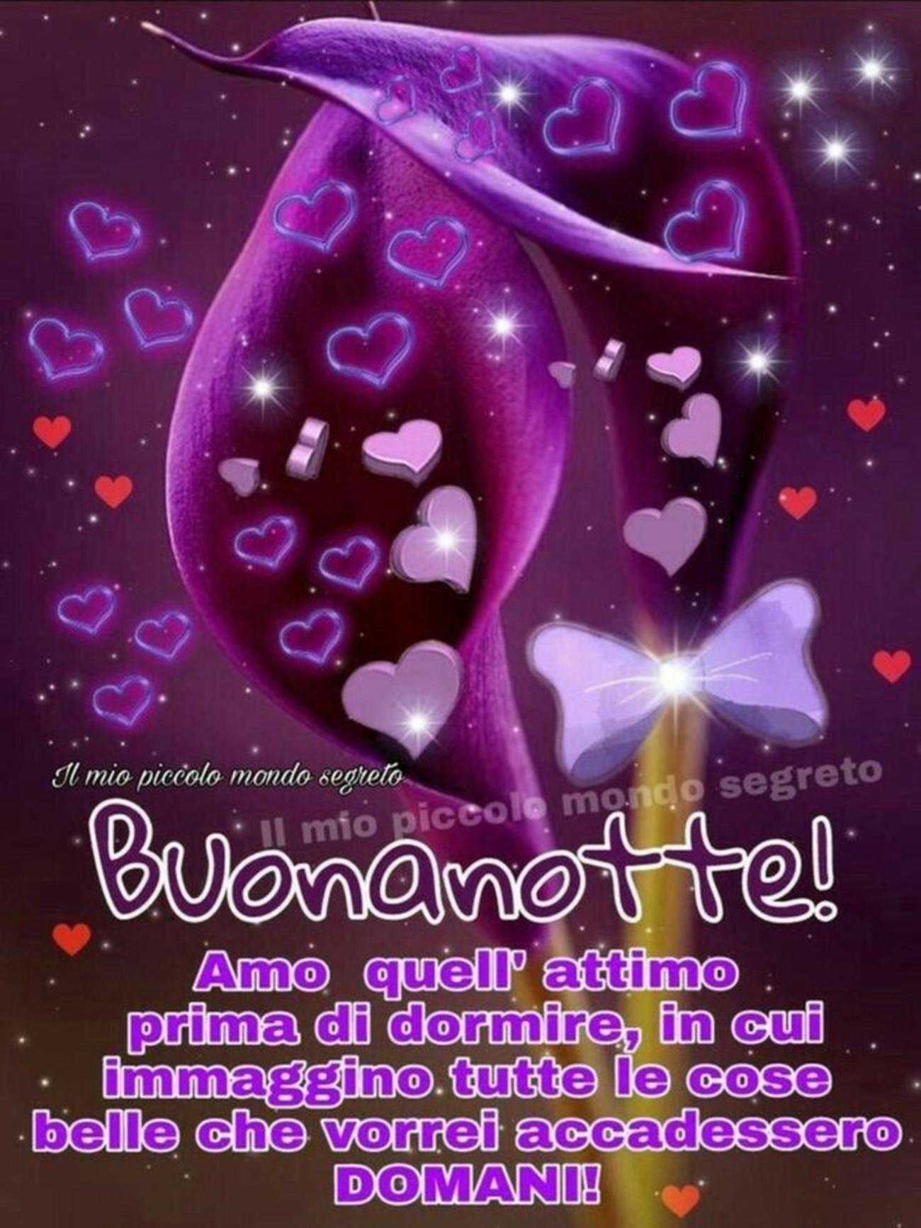 Buonanotte D Amore 1 Buongiornoate It