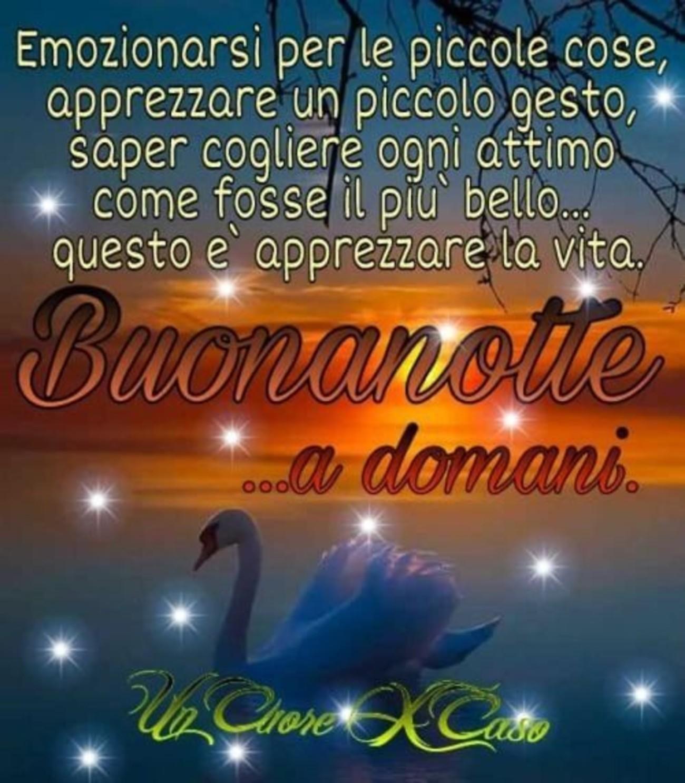 Buonanotte e sogni d'oro a tutti (1)