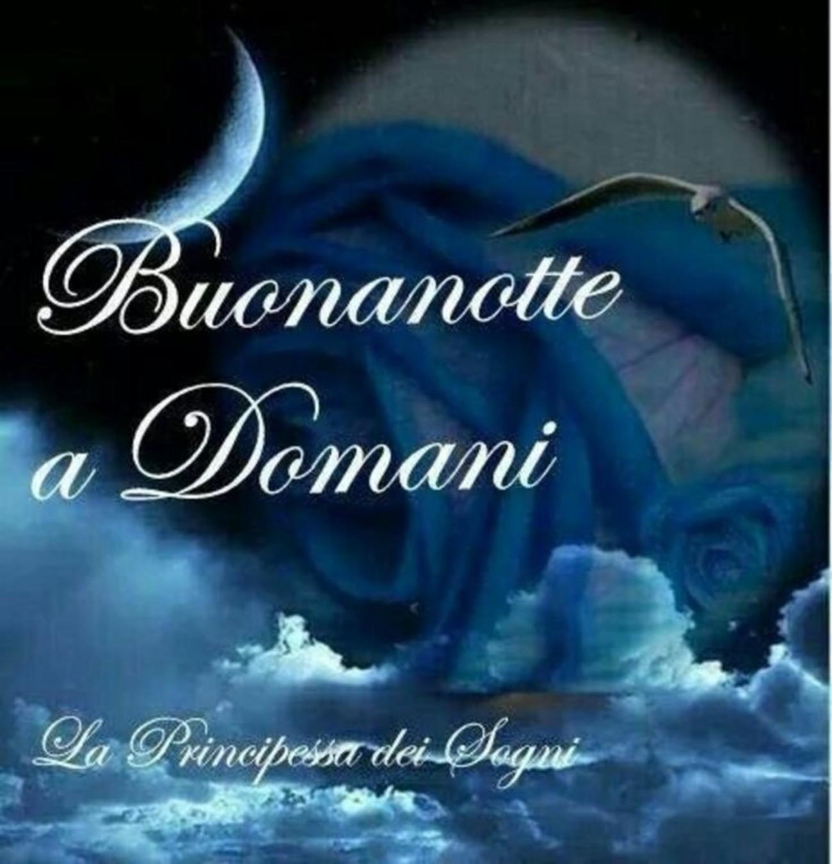 Buonanotte e sogni d'oro a tutti (2)