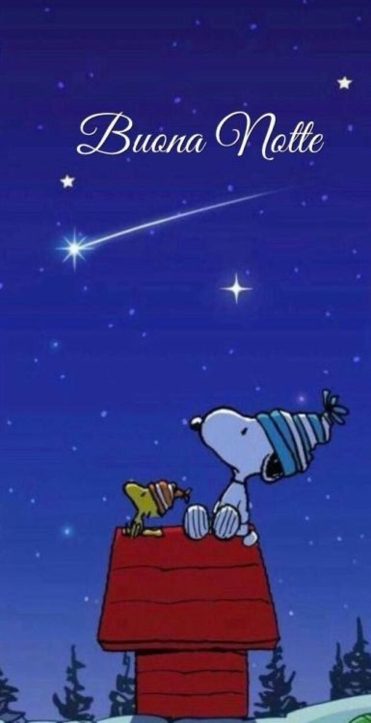 Buonanotte Snoopy Buongiornoate It