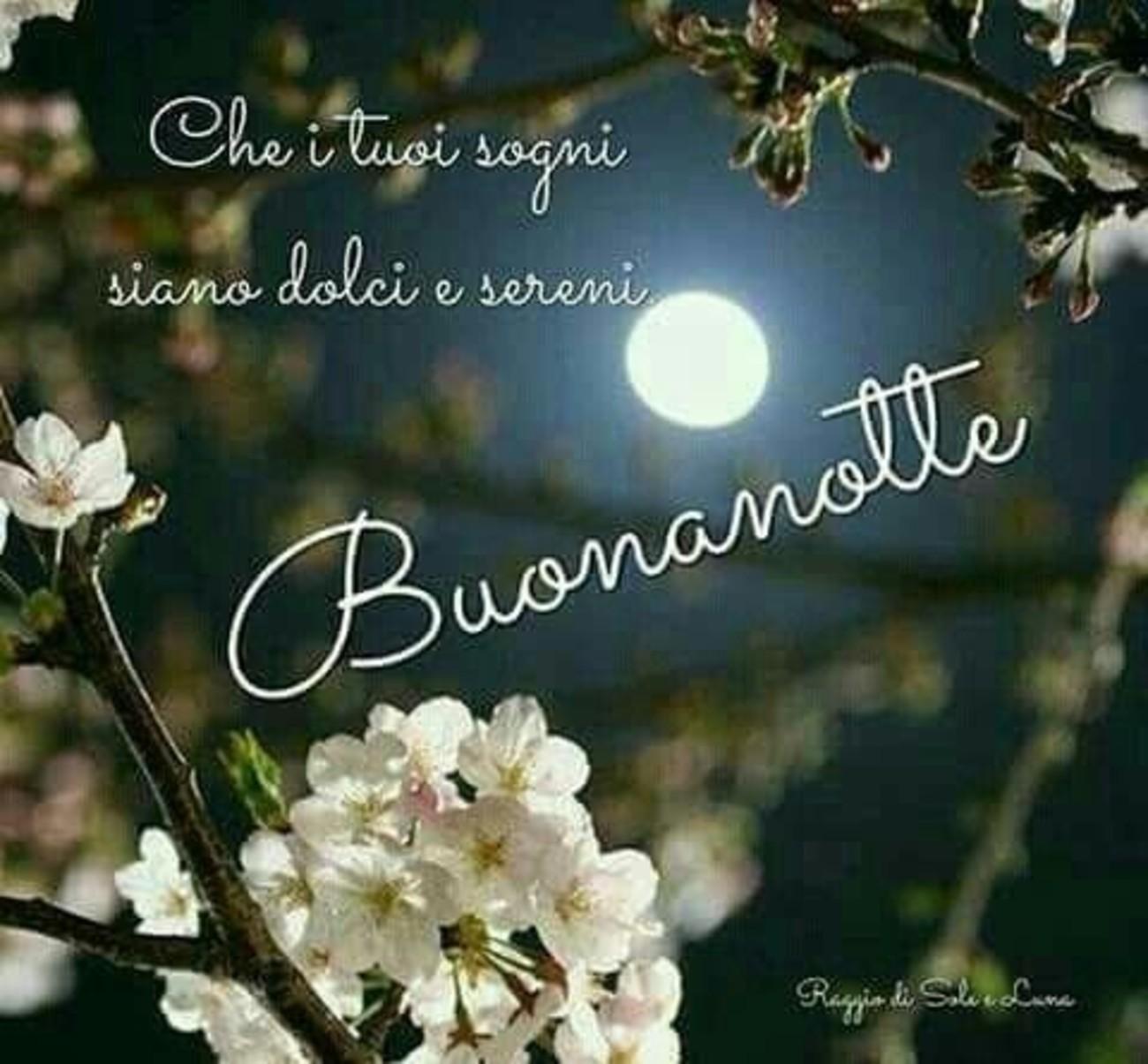 Buonanotte Speciale 14 Buongiornoate It