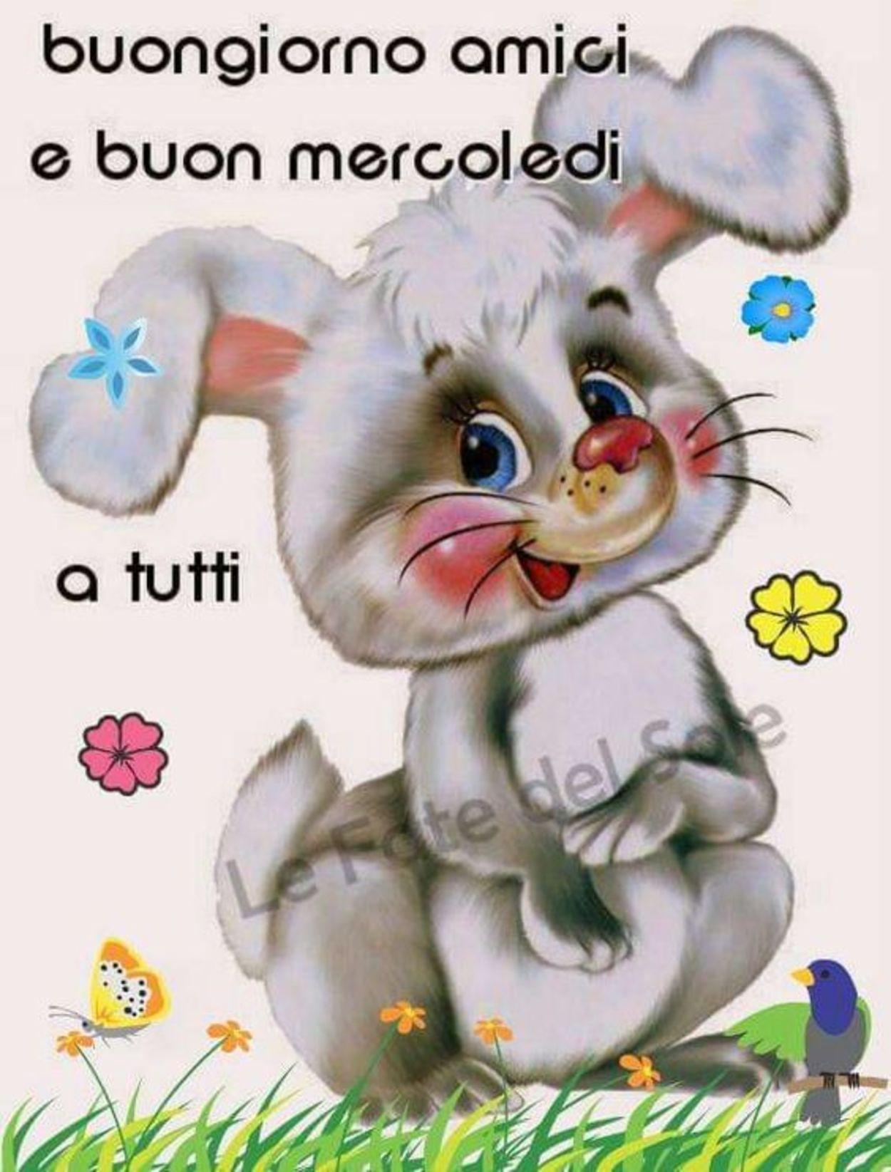Buongiorno amici e buon mercoledì (2)