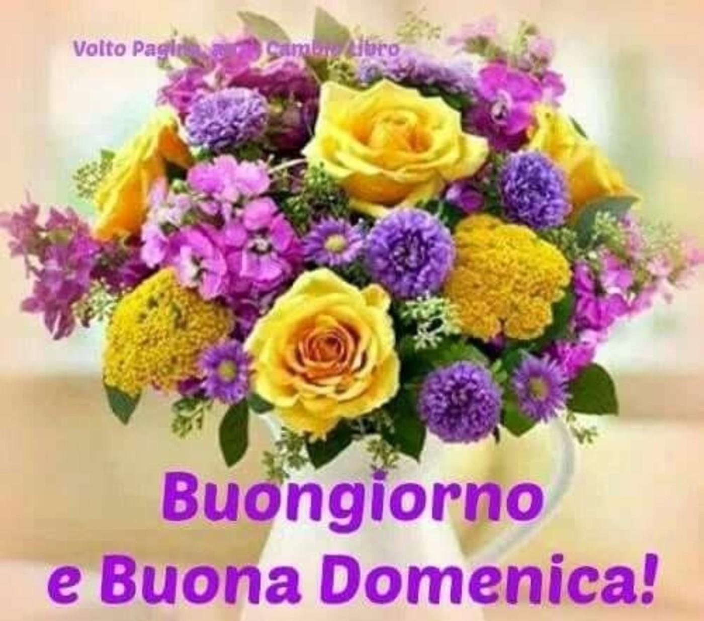 Buongiorno E Buona Domenica A Tutti 5 Buongiornoateit