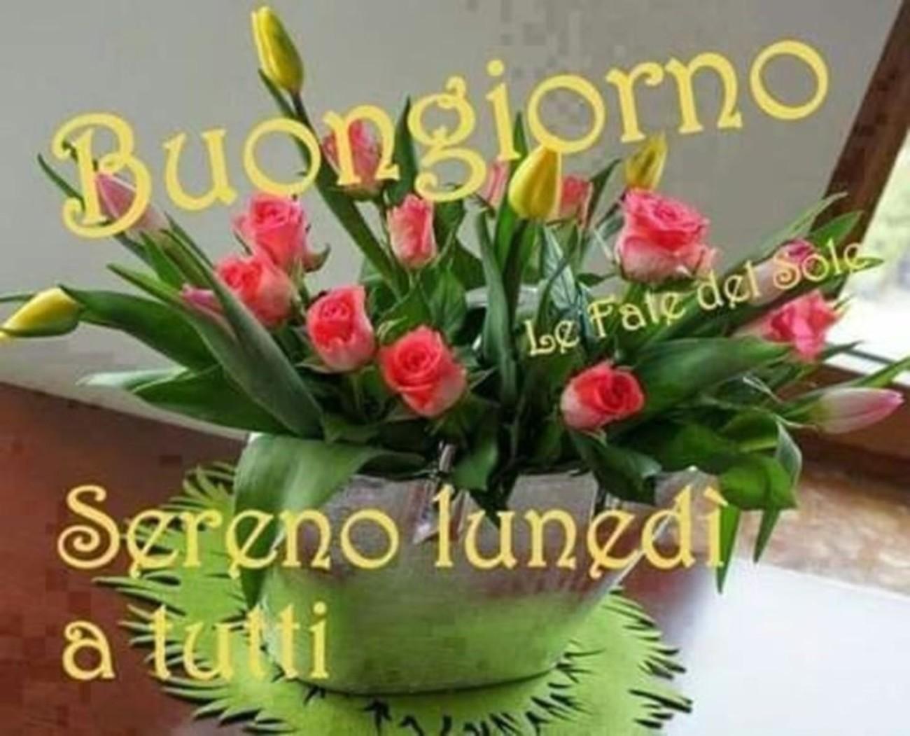 Immagini Belle Del Buon Lunedì 3 Buongiornoate It