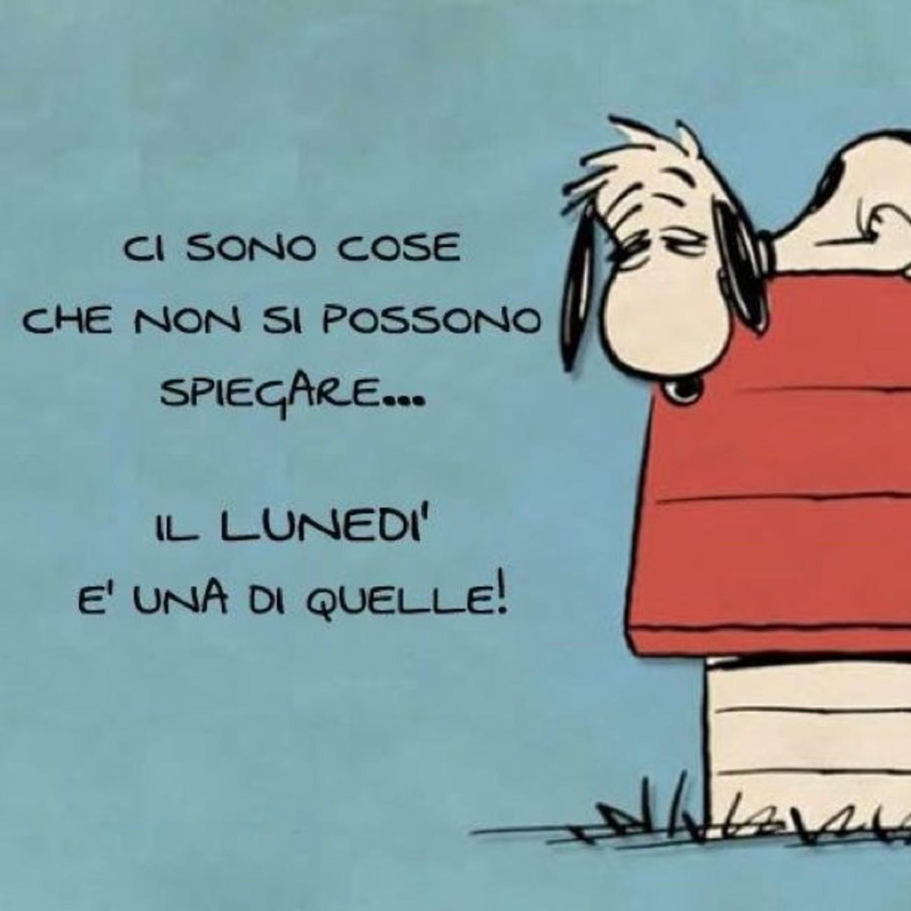 Lunedì con Snoopy