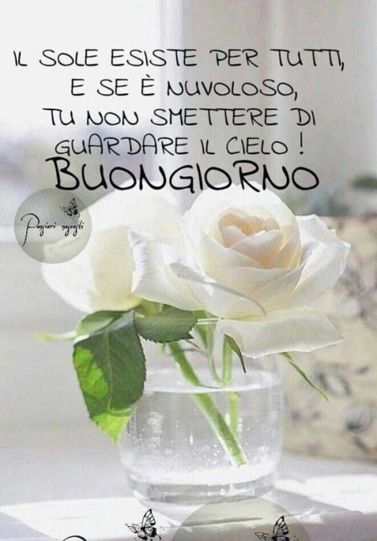Belle Immagini Buongiorno Da Condividere 5 Buongiornoate It