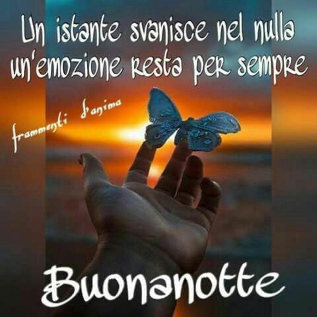 Buonanotte Con Farfalle 1 Buongiornoate It