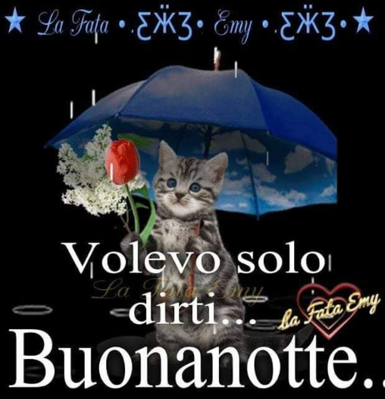 Buonanotte Con Gatto 3 Buongiornoate It