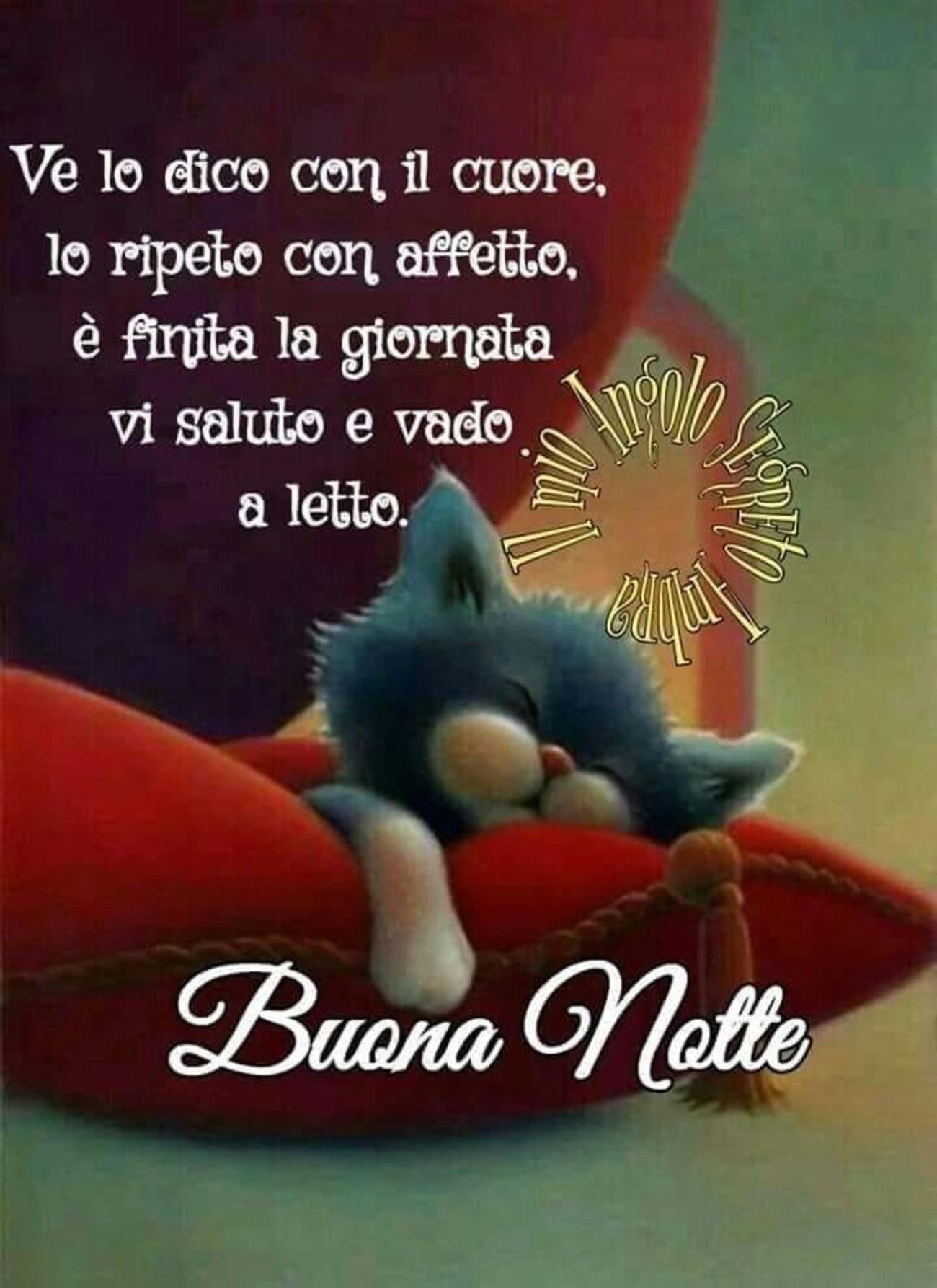 Buonanotte Con Gatto Buongiornoate It