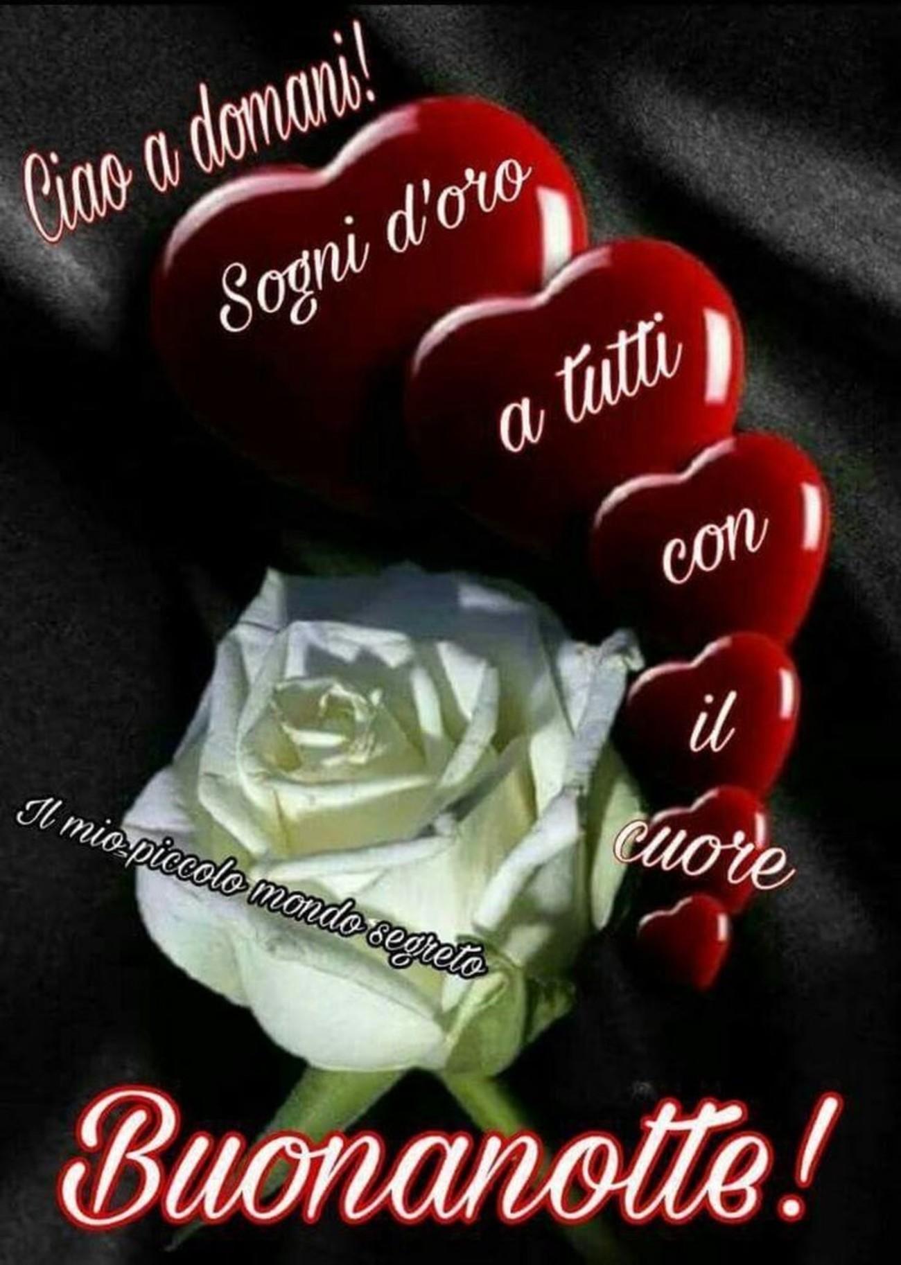 Buonanotte E Sogni D Oro A Tutti Buongiornoate It