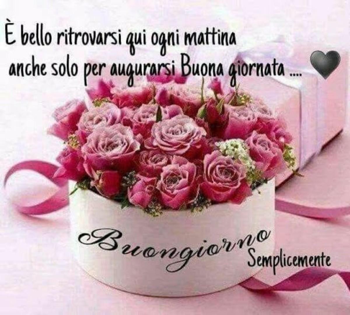Buongiorno Floreale Immagini Nuove 3 Buongiornoate It