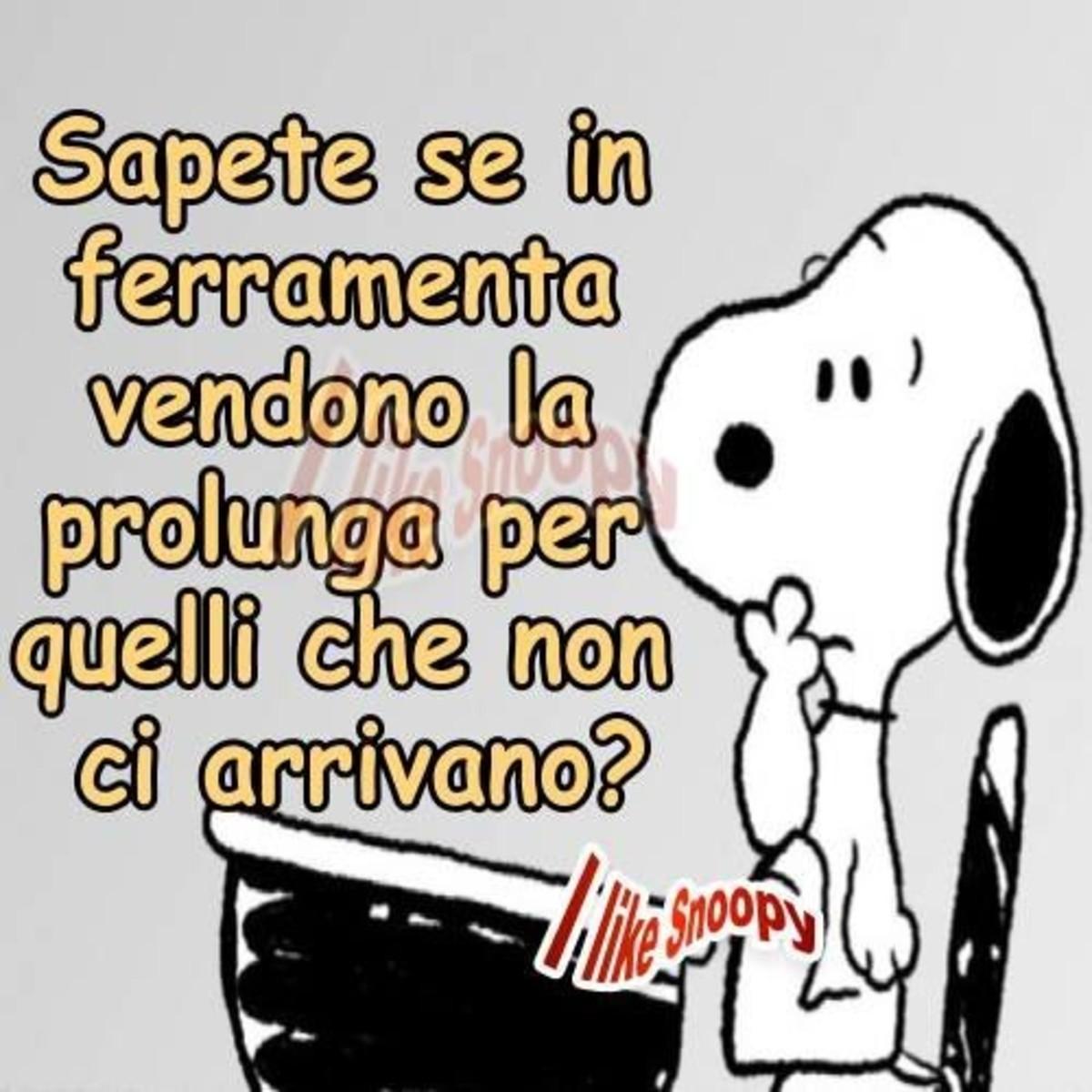 Frasi Divertenti Con Snoopy Buongiornoate It