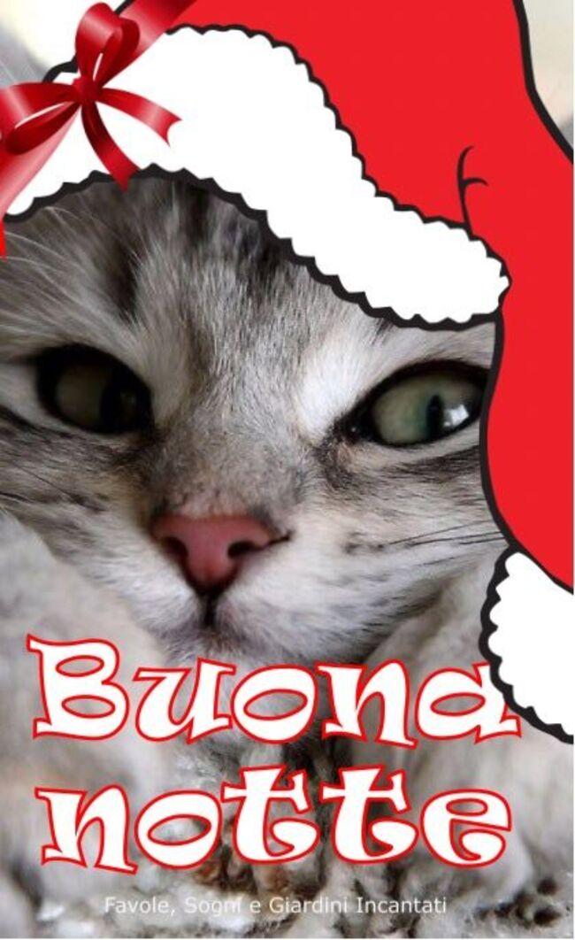 Buonanotte natalizia (1)
