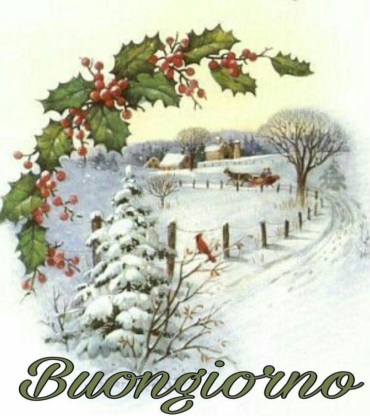Buongiorno Natale (3)